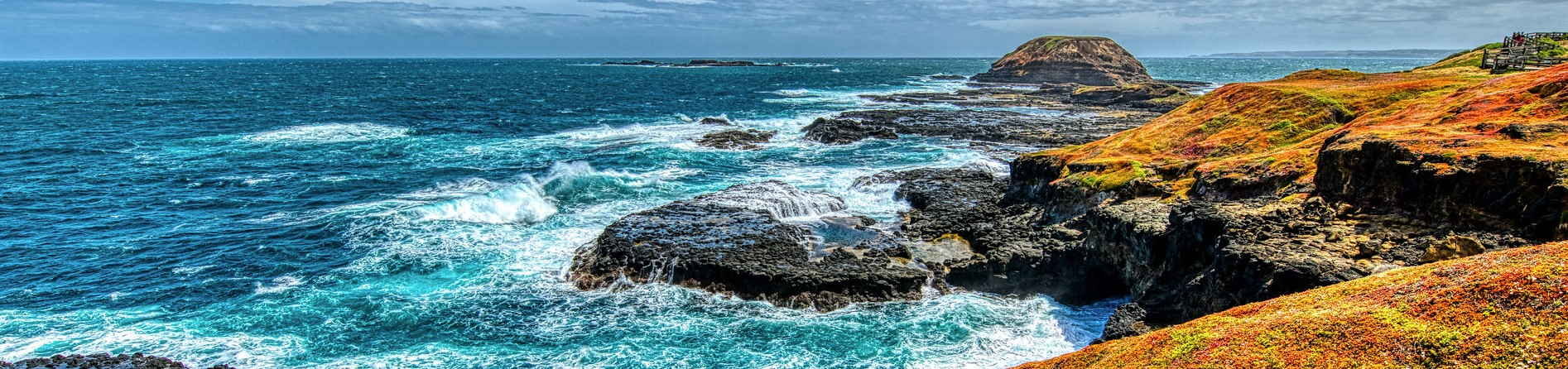 Reasons Why You Should Visit Phillip Island